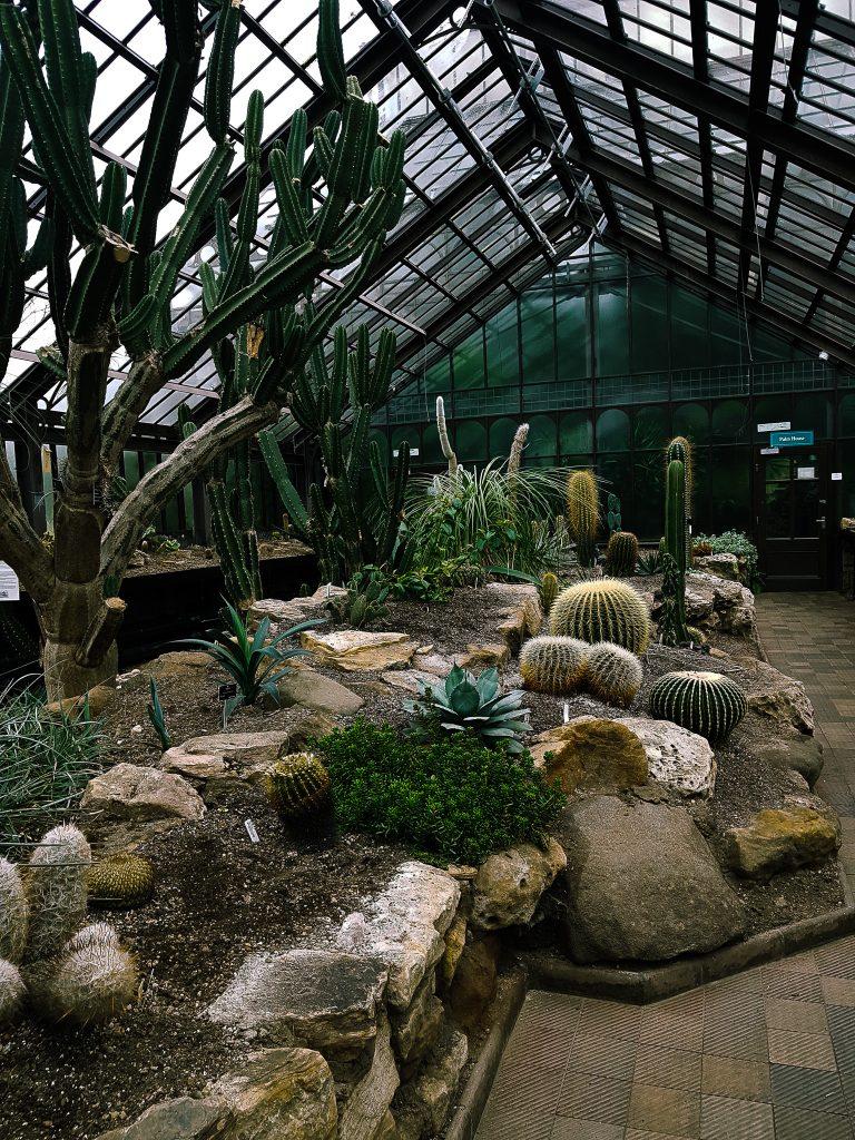 Glasgow Botanic Gardens Desert Room