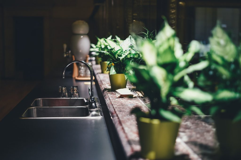 Sink, Indoor Plants